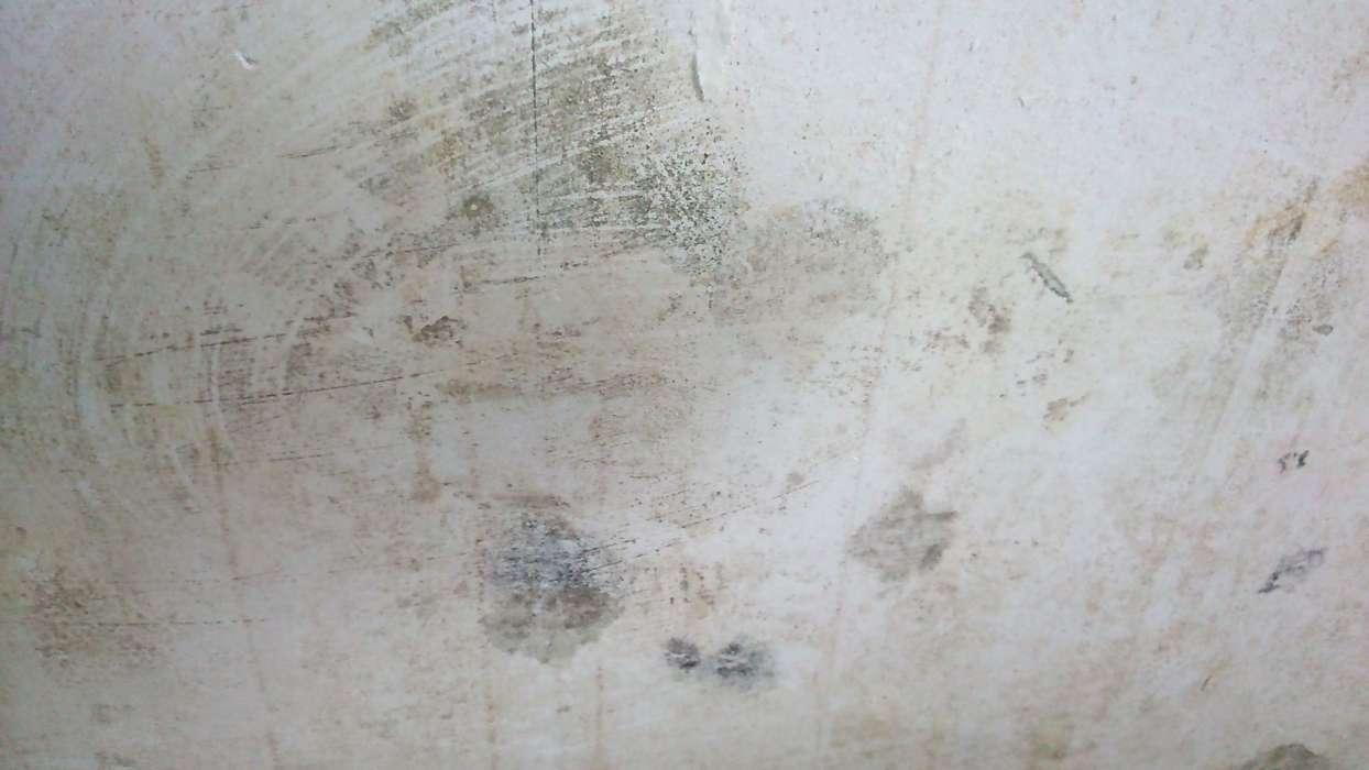Moisissure Coin De Mur humidité dans le mur ou condensation : comment les différencier